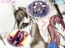 Dac_041
